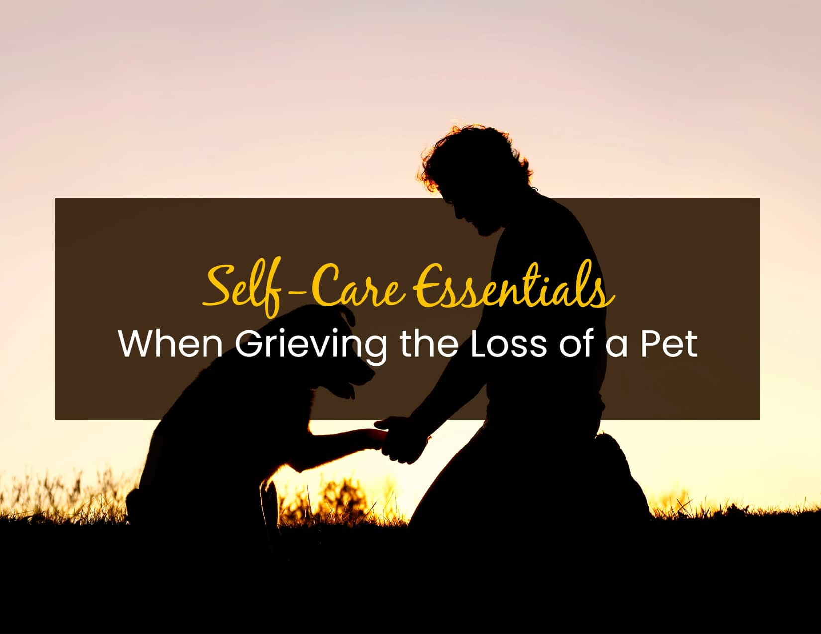 Self-Care Essentials When Grieving the Loss of a Pet - WP